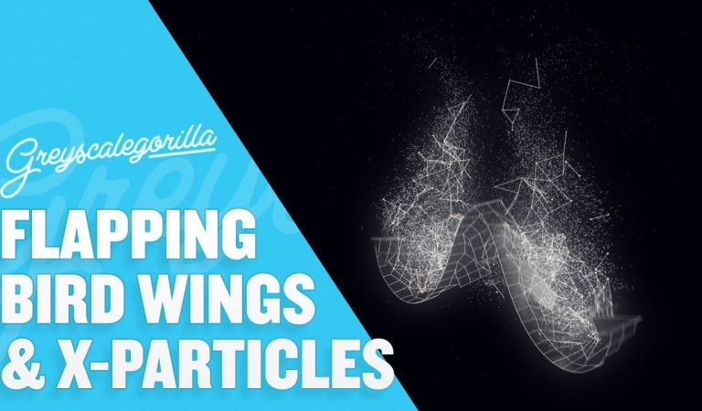 Animate A Flapping Bird Wing with Joints in Cinema 4D from Greyscalegorilla