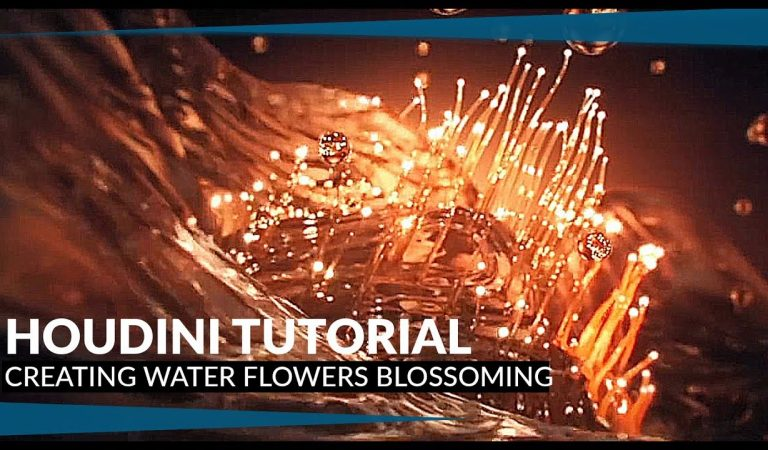 Creating Water Flowers Blossoming in Houdini from Mike Stoliarov