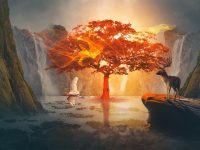 Born Photoshop Fantasy Manipulation Amazing Light Effect in Photoshop from Picture Fun